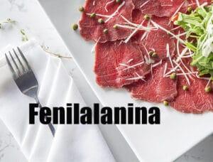 fenilalanina es un aminoácido