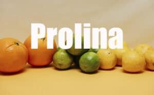 Prolina: ¿para qué sirve?